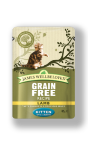 James Wellbeloved Kitten Pouch Lamb 85gx12