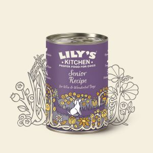 Lily's Kitchen Senior Recipe 400g